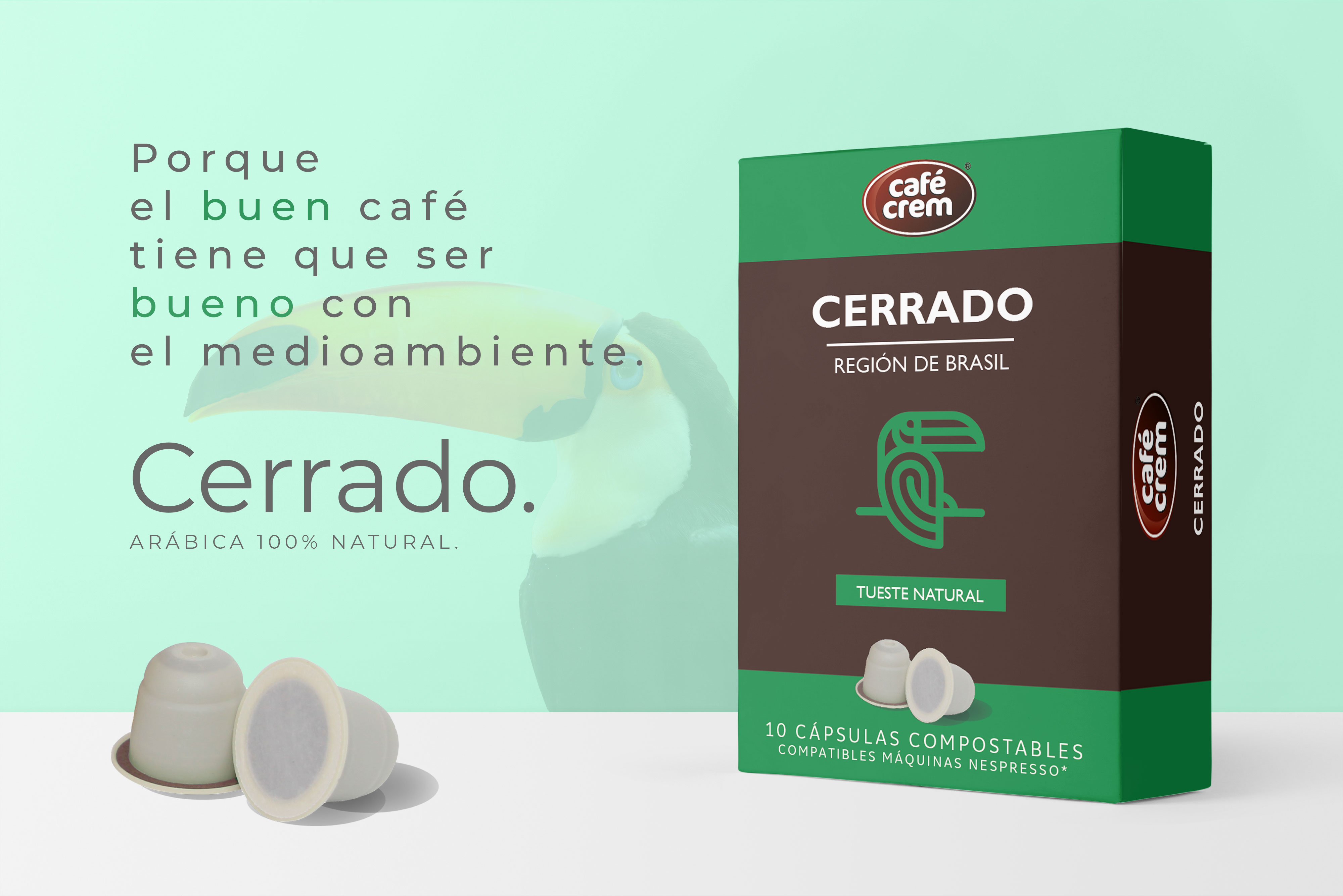 capsulas compostables